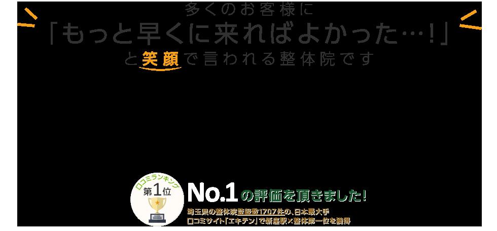 新座・朝霞にある「カイロプラクティック整体院いしかわ」 メインイメージ